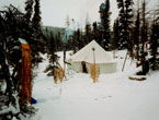 North Woods Ways tent in Labrador snow