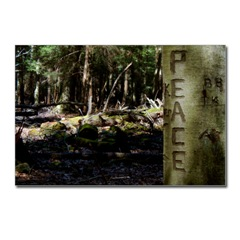 peace tree postcard