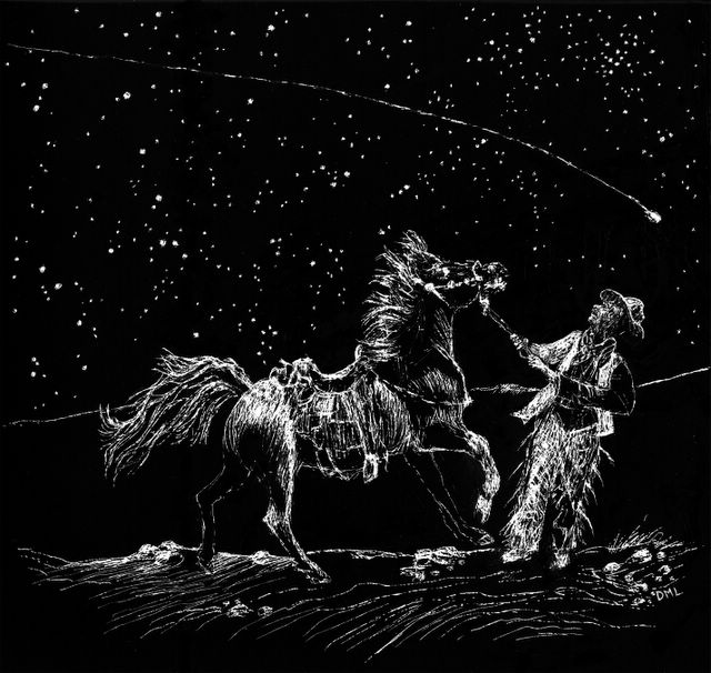 scratchboard drawing of horse, man & starry sky